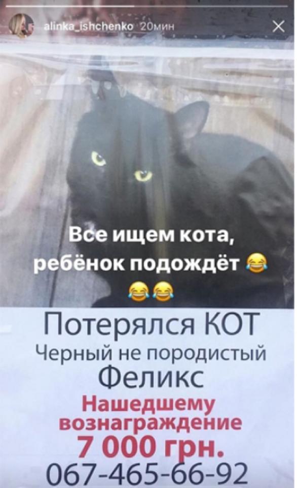 В Instagram следователь Оболонского управления полиции Алина Ищенко предложила Киевлянам искать кота вместо двухмесячного младенца
