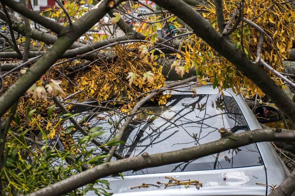 Транспортное средство получило значительные повреждения