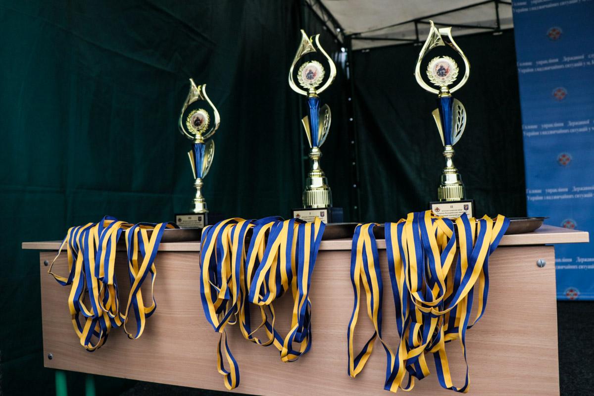 Лучшая команда получит кубок и медали