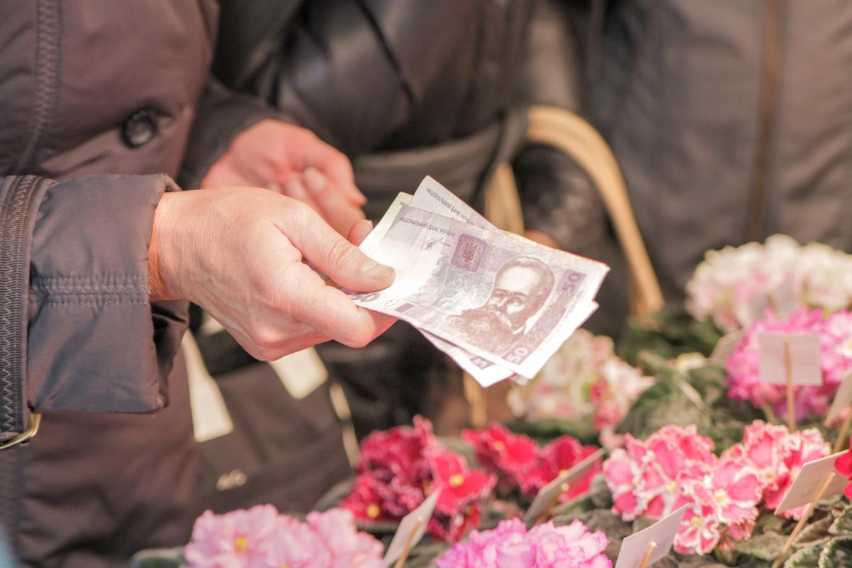 Растения можно приобрести за 50-100 гривен