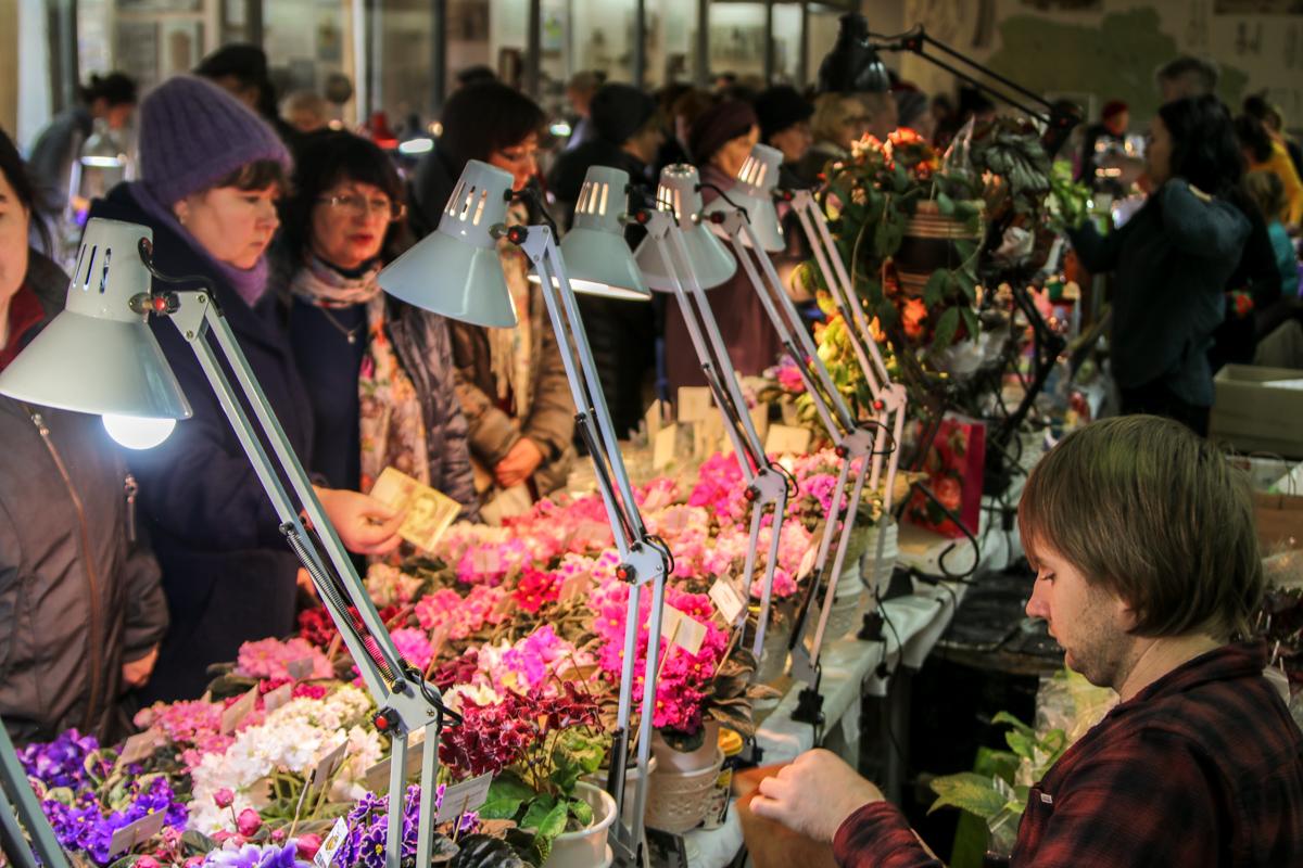 Посетители могут купить растения и получить информацию о правильном уходе за саженцами