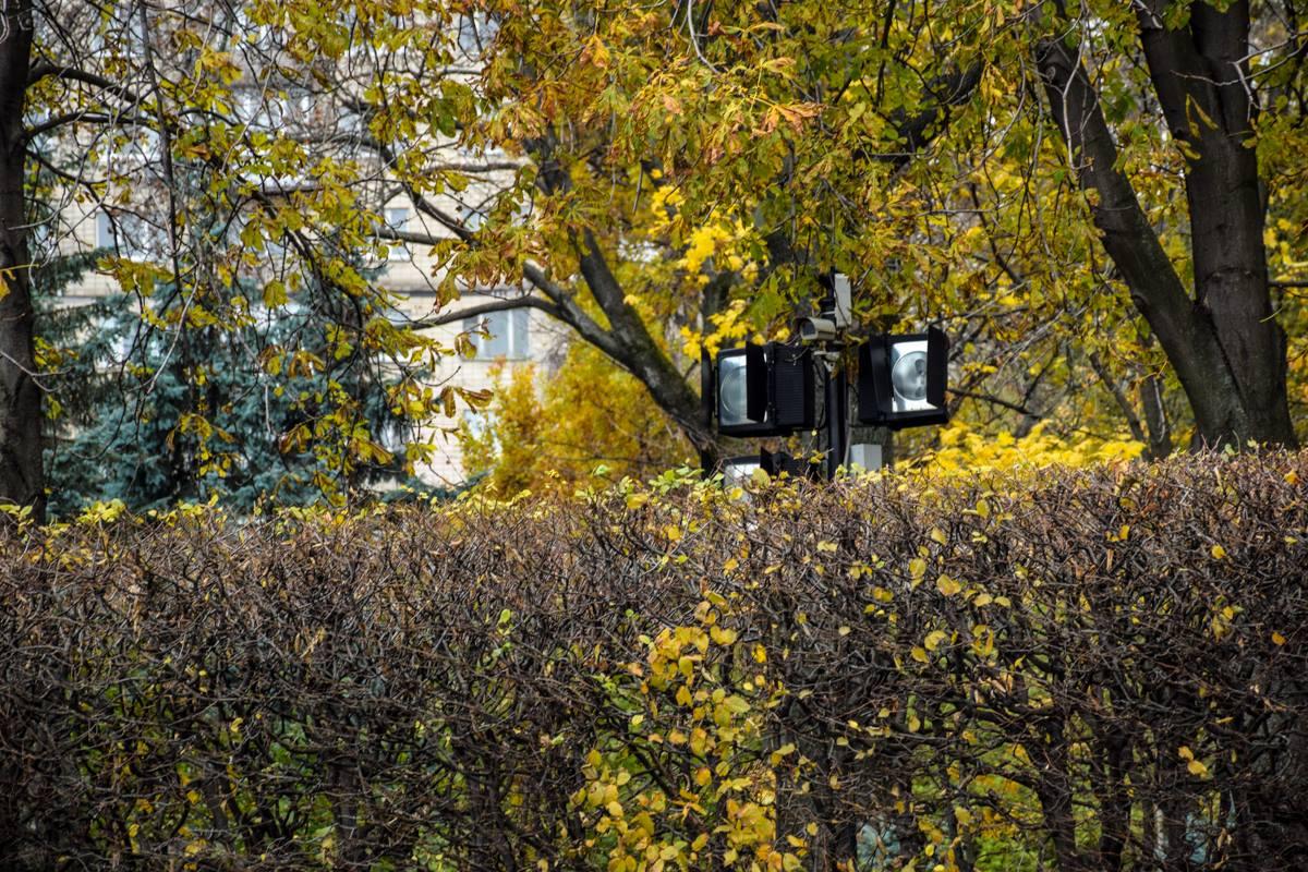 В парке стоят камеры видеонаблюдения. Вероятно, они сняли вандалов