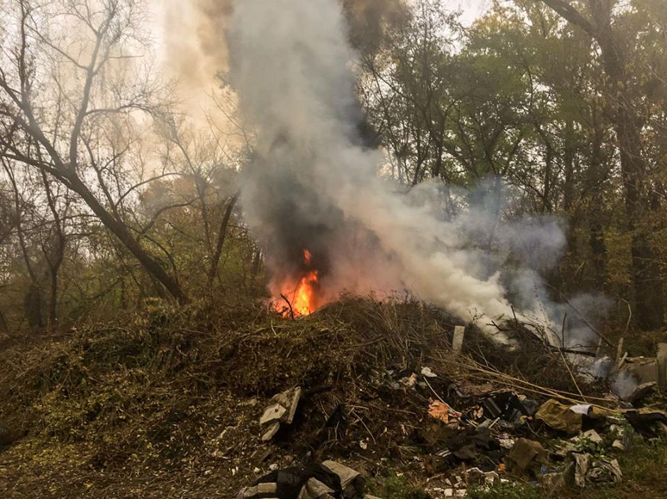 На мусорнике Гидропарка загорелась гора сухих веток