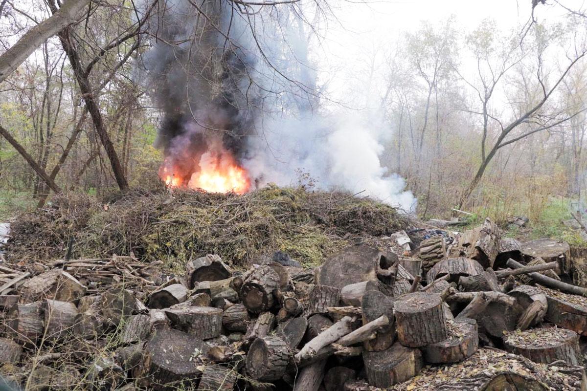 Под ветками оказались шины и огонь разгорелся сильнее