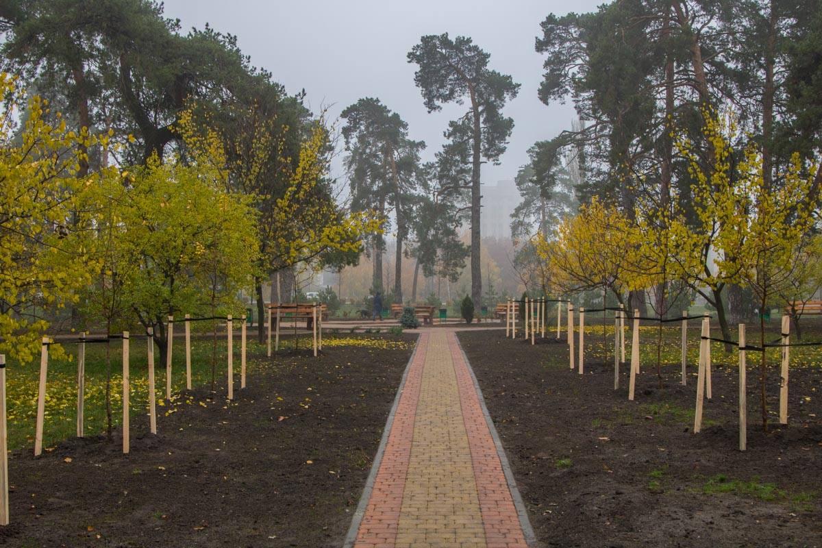 В парке посадили 32 новые дерева