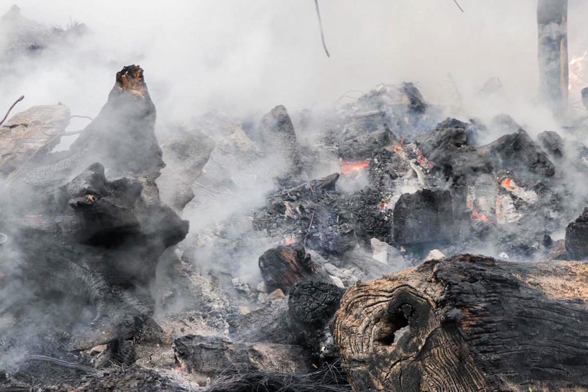 Возгорание удалось ликвидировать и никто не пострадал