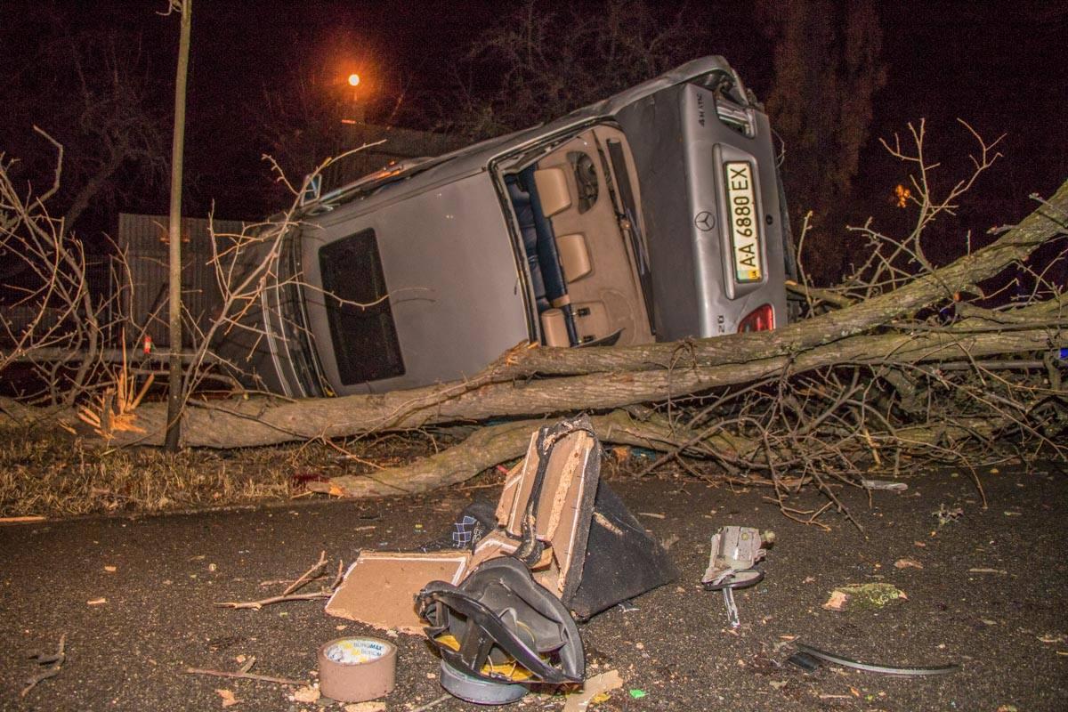 Mercedes отбросило в дерево