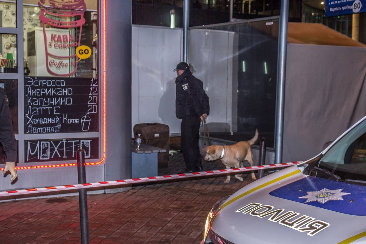 На место инцидента прибыли взрывотехники с собаками