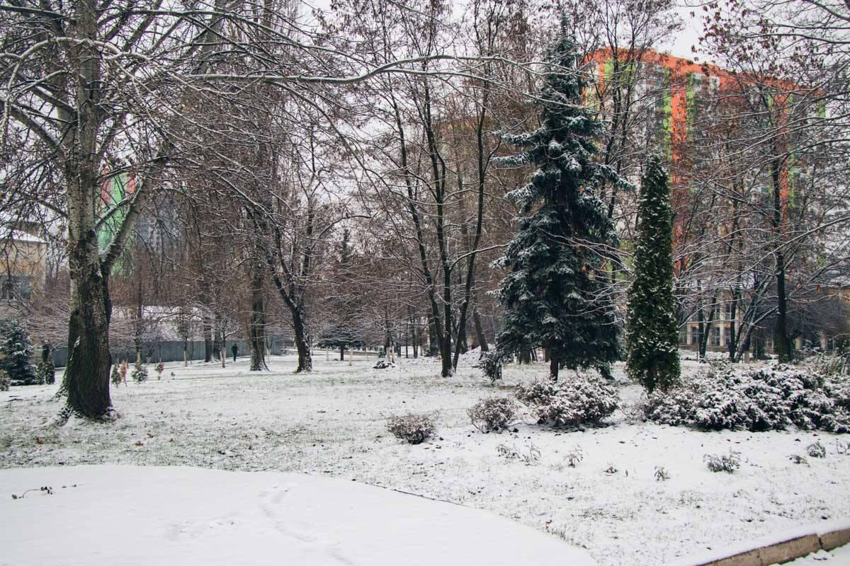 Парки укрылись снежным одеялом