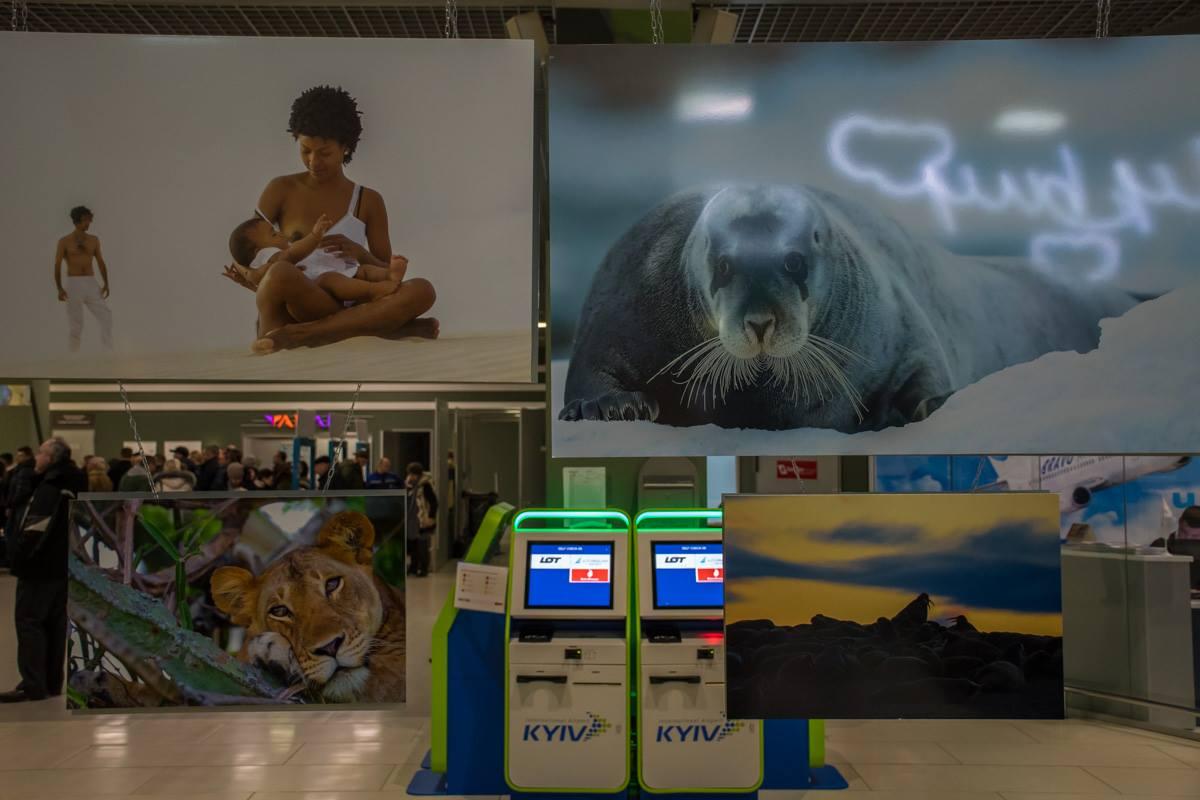 Многие из представленных на выставке снимков, были опубликованы в издании National Geographic