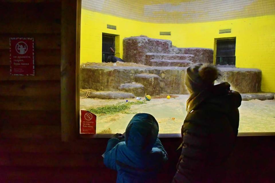 Каменный постамент, на котором спит горилла