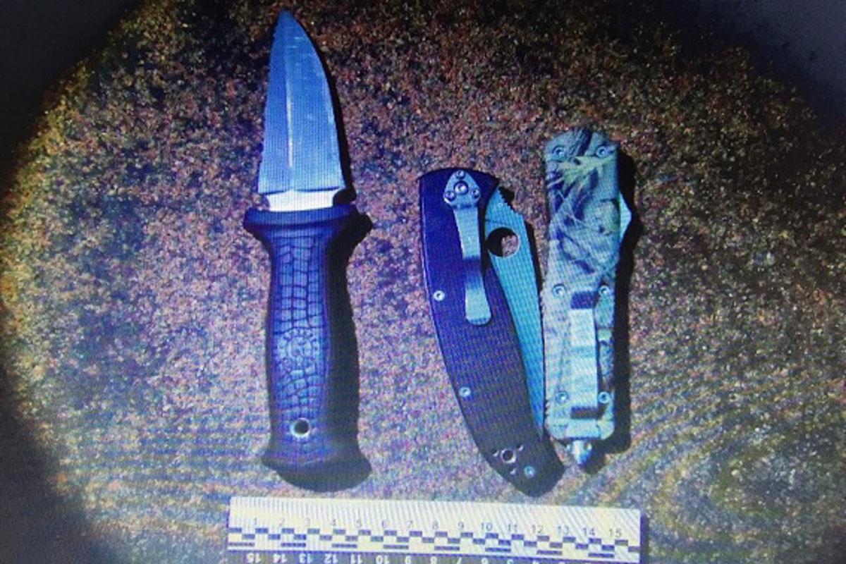 Документация на ножи и пистолеты вызвала подозрение у правоохранителей