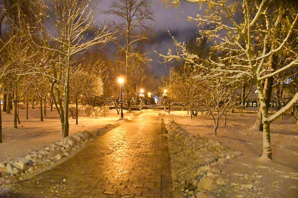 Полночь в парке Шевченко