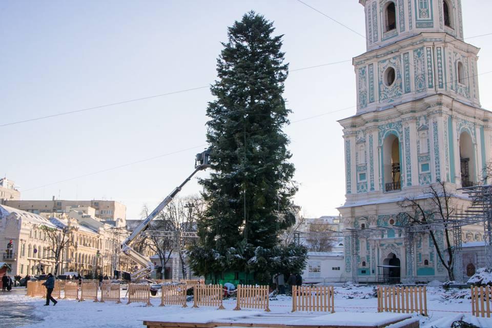 30-метровую елку решили апгрейдить