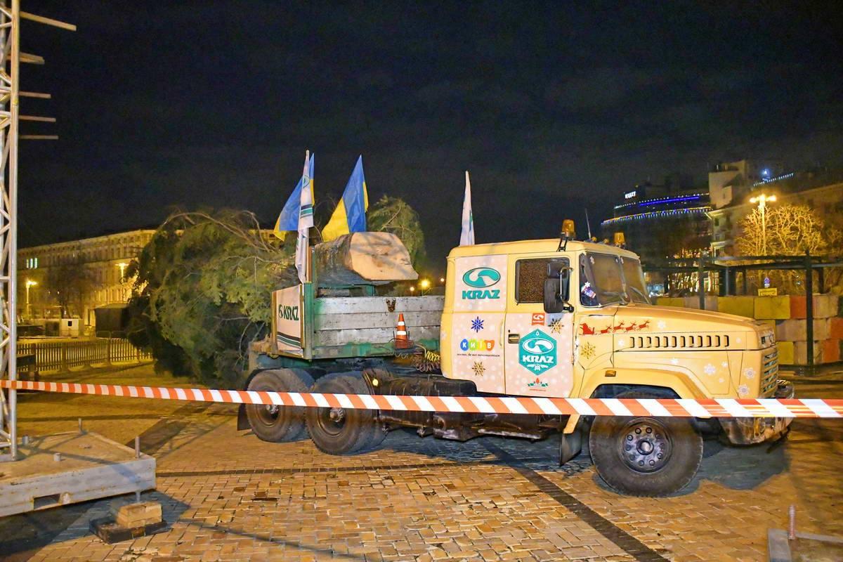 В Киев прибыла новогодняя елка