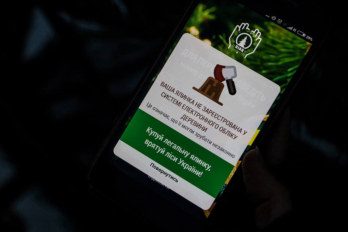 """Приложение """"Ялинка"""" с помощью которого можно проверить легальность елки"""