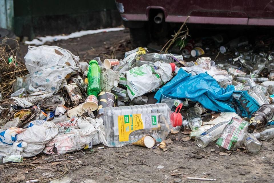 Изображение хорька находится прямо возле горы мусора