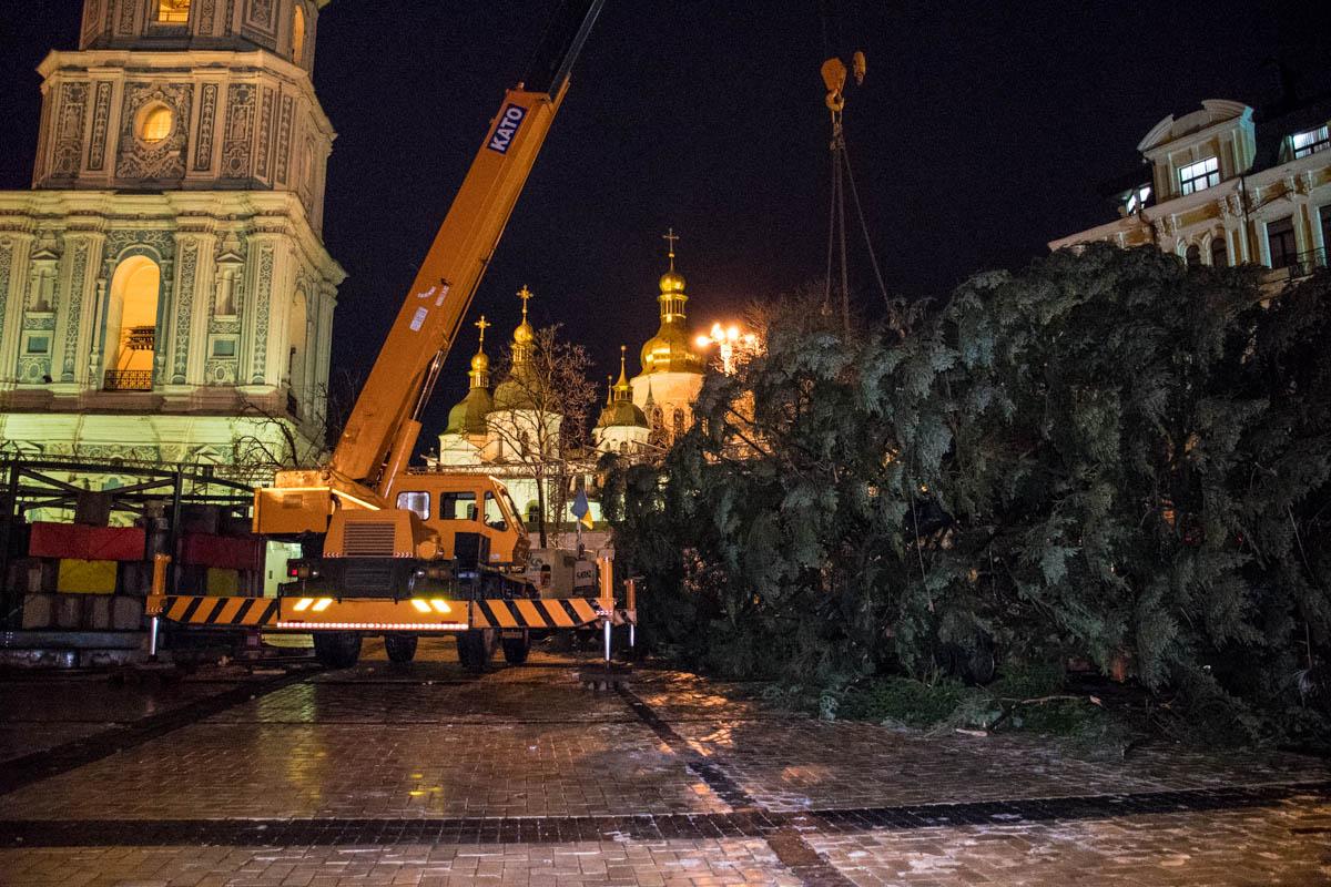 Организаторы пообещали установить елку ближе к 7:30 утра