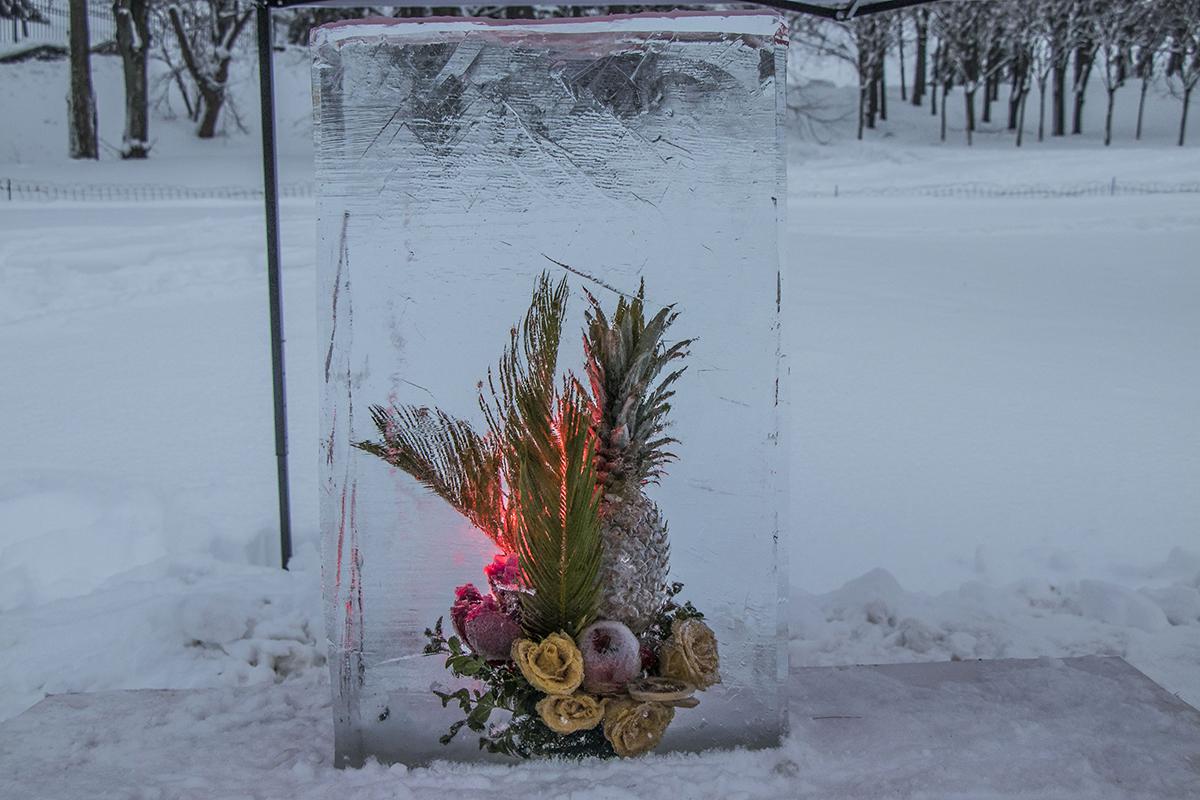 20 цветочных композиций находятся прямо внутри льдины