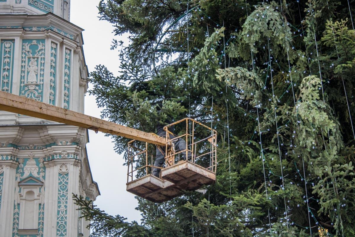 На главной елке страны появилась первая гирлянда