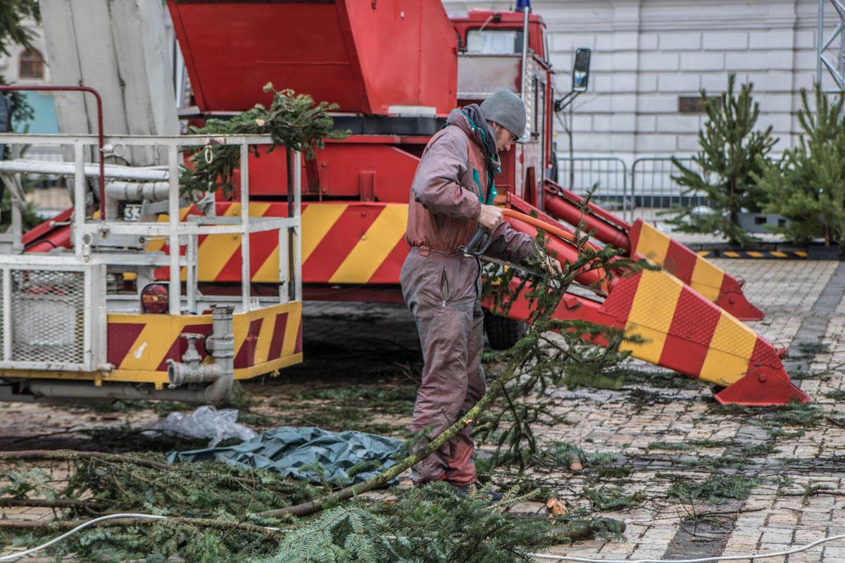 Продолжаются работы по обрубке веток на елке