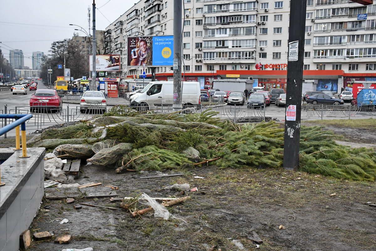 Не проданные деревья больше никому не нужны
