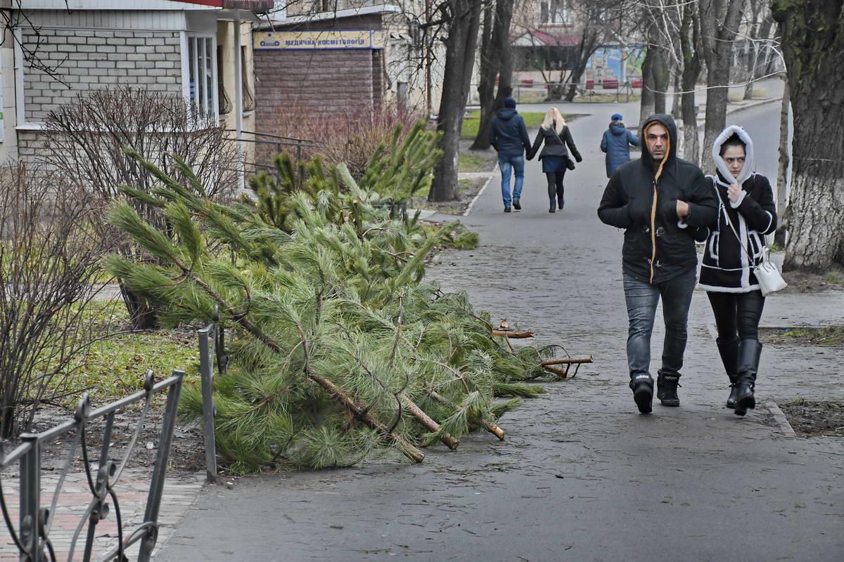 Елки бросили и на улице Ереванская