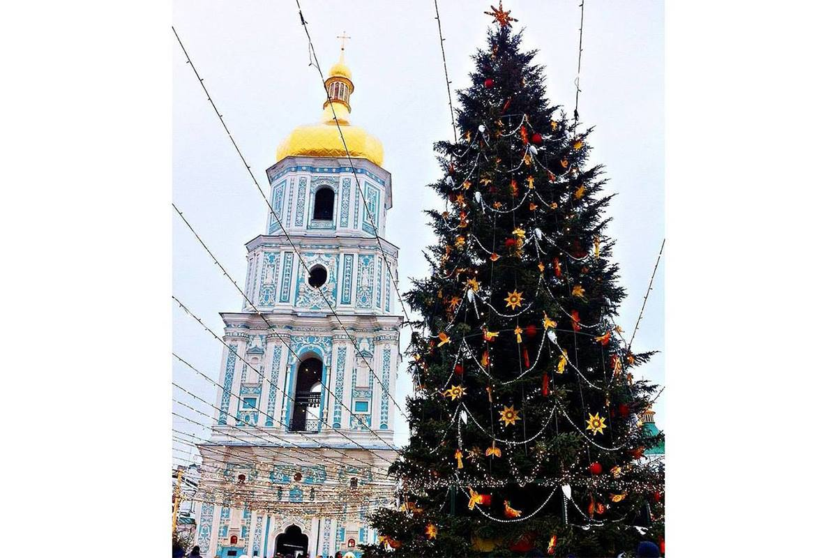 В этом году в качестве главной елки в Киев приехала 100-летняя красавица, фото: alina_zvarych