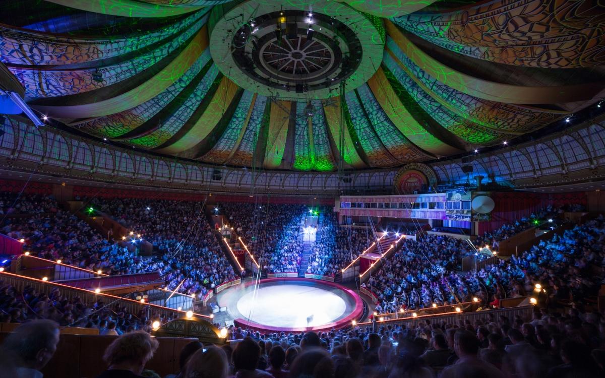 Яркое представление на арене Национального цирка