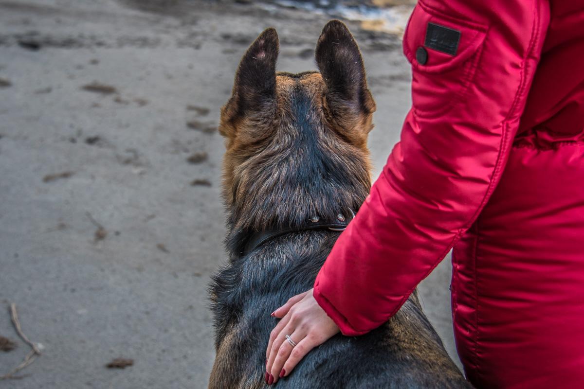 Многие общественники пришли на митинг со своими домашними животными