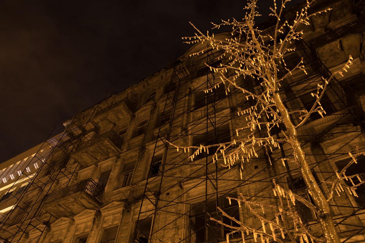 Мороз не пожалел даже деревья