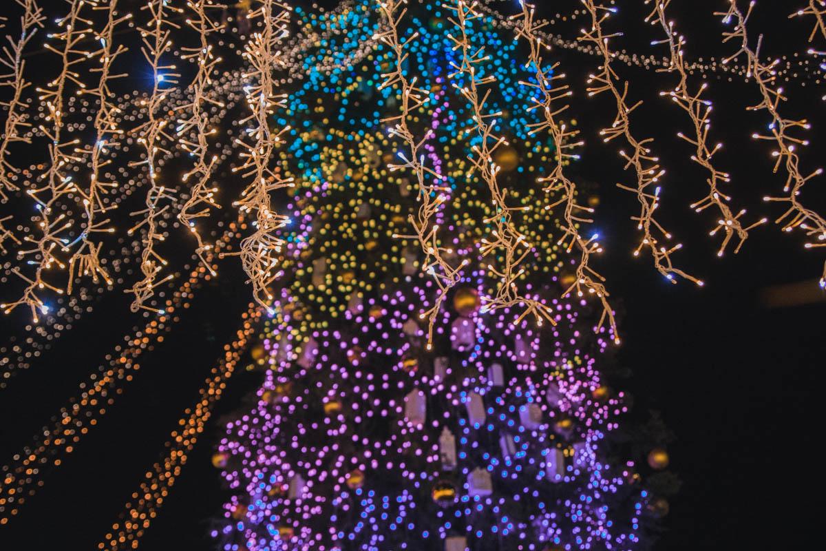 Главная елка Киева - самая популярная достопримечательность столицы