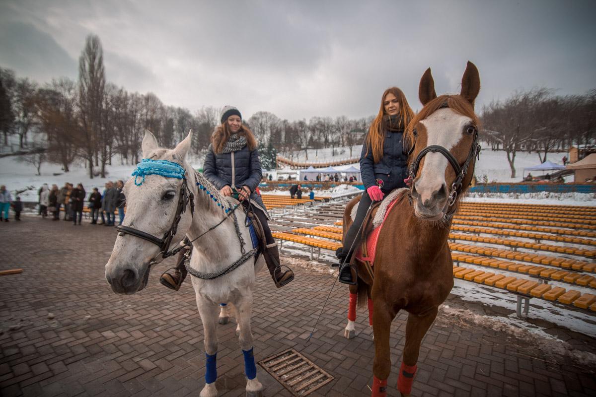 Лошади тоже любят фотографироваться