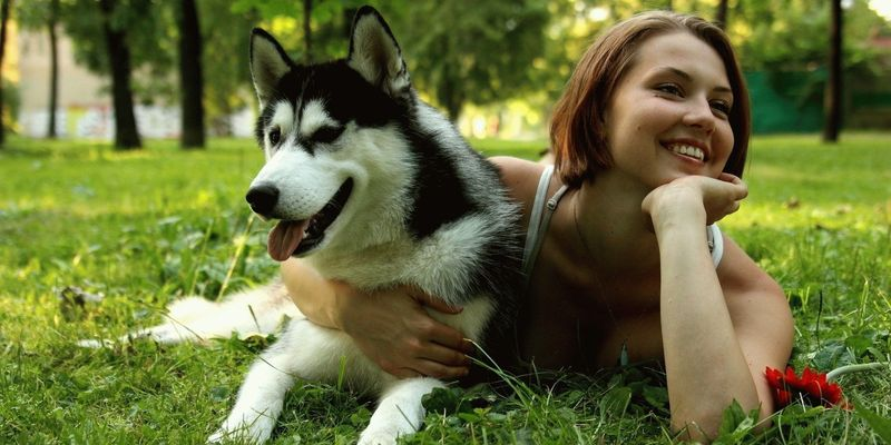 Лекция о том, как наладить отношения с собакой