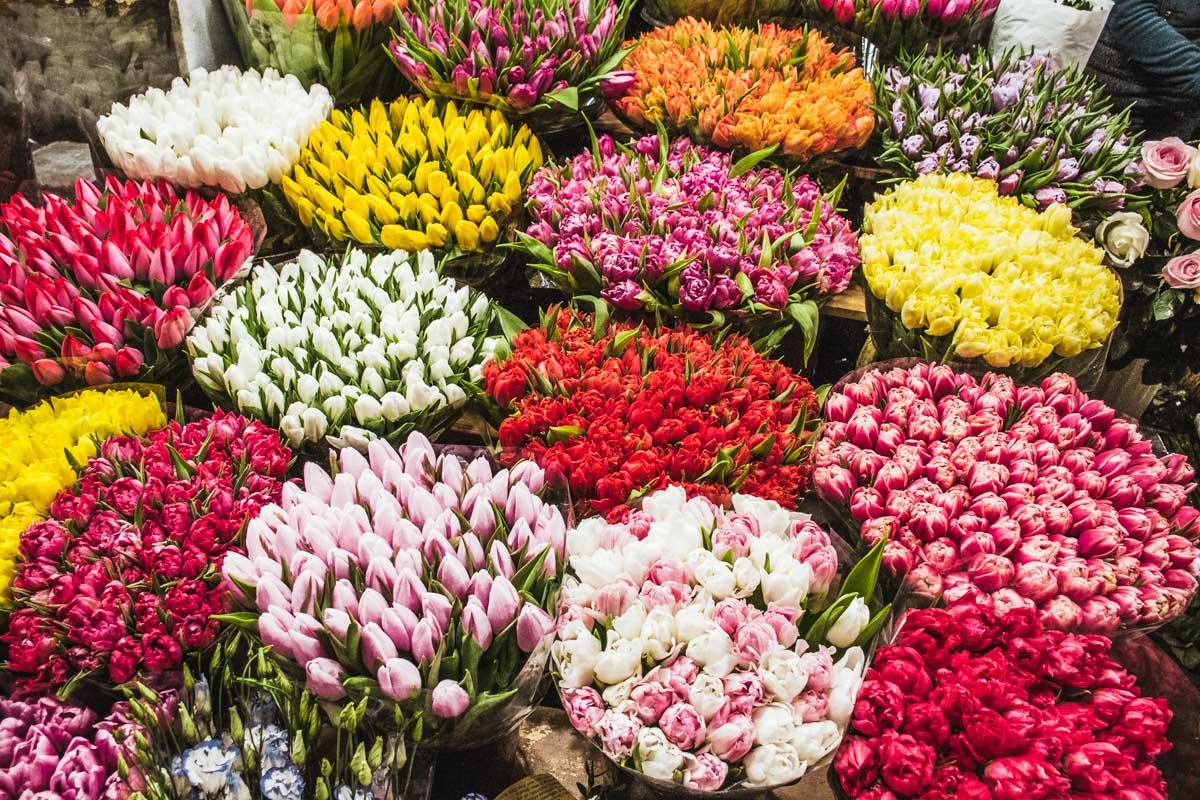 Дарите цветы любимым не только по праздникам
