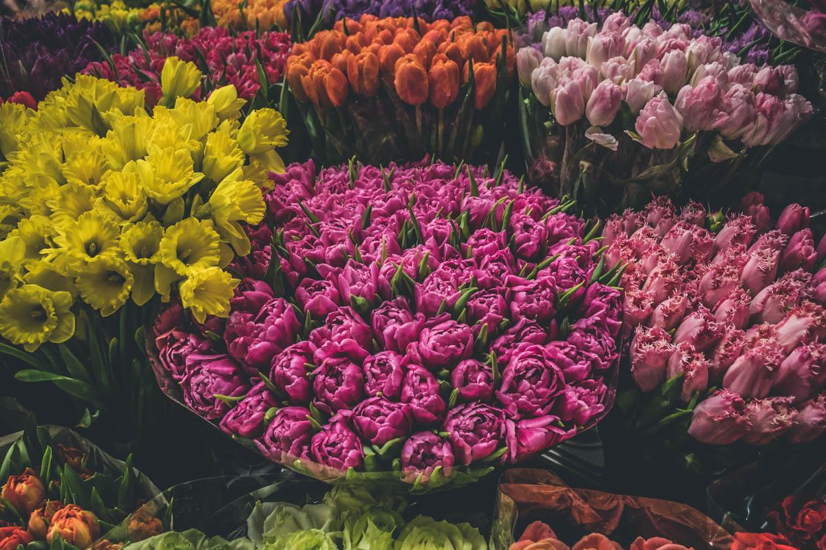 Теплицы занимаются оптовыми продажами цветов