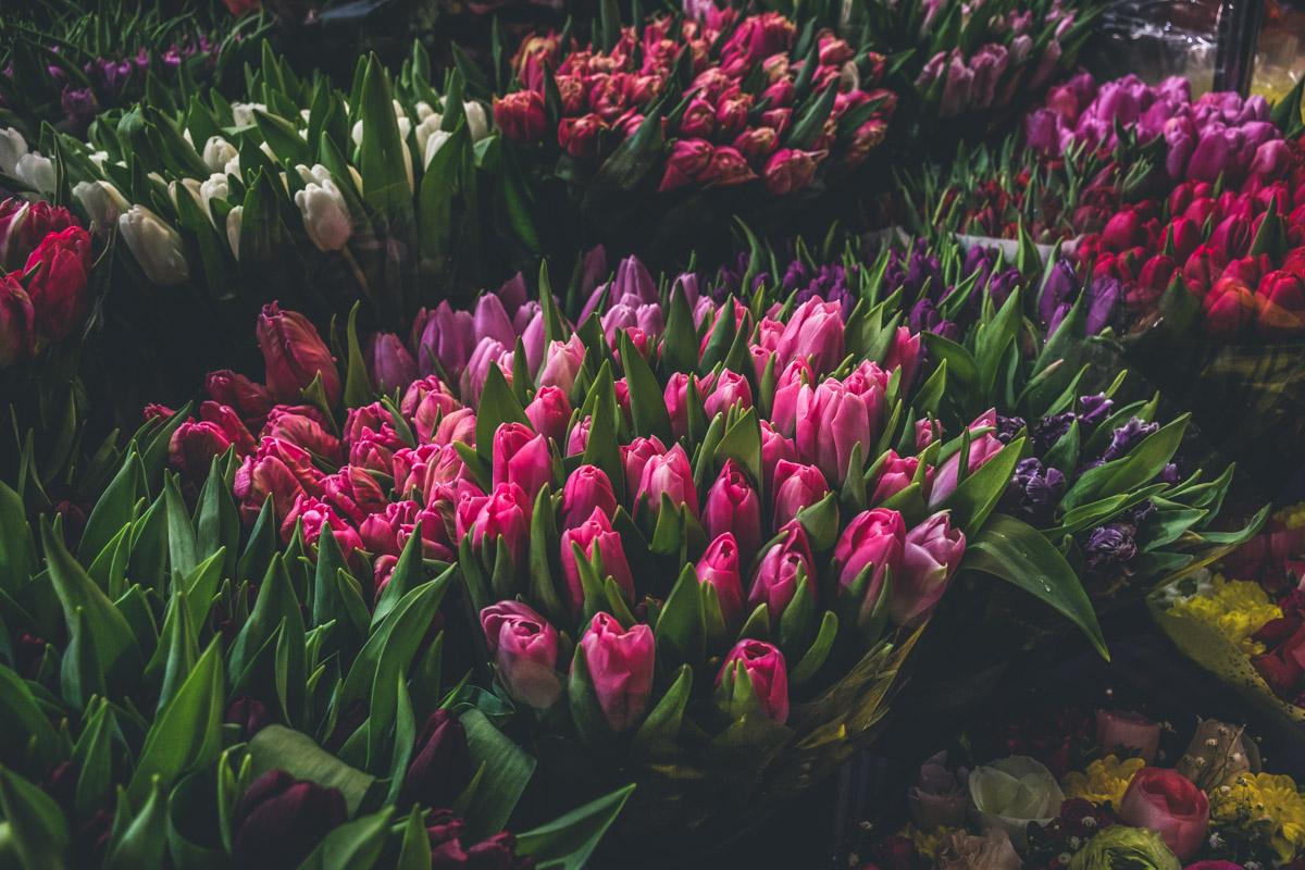 Перед покупкой цветов убедитесь, что они свежие
