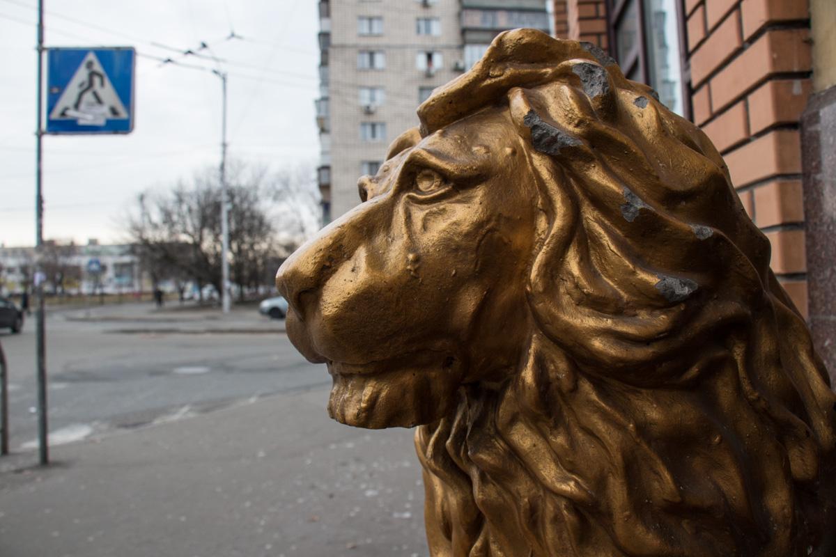Охранник Лев на входе не смог обеспечить безопасность ночью
