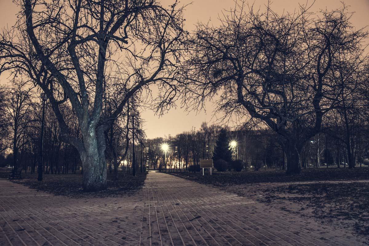 Пустынные улицы парка ночью отдыхают от людей