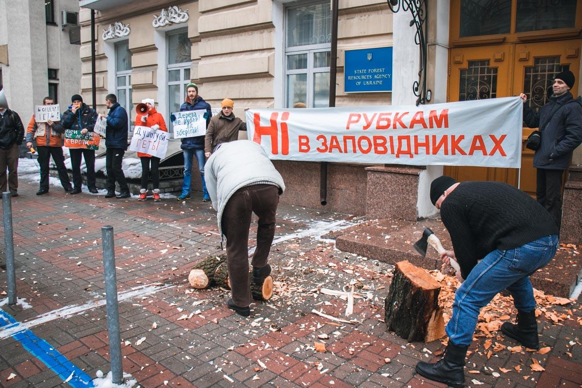 Организаторы акции, как и обещали, рубили дрова под зданием Гослесагентства