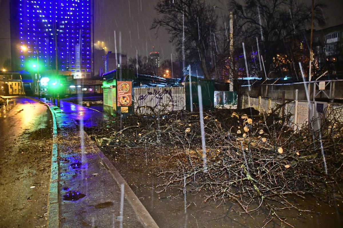 На улице Жилянской, 160 около водопроводной насосной станции упало дерево