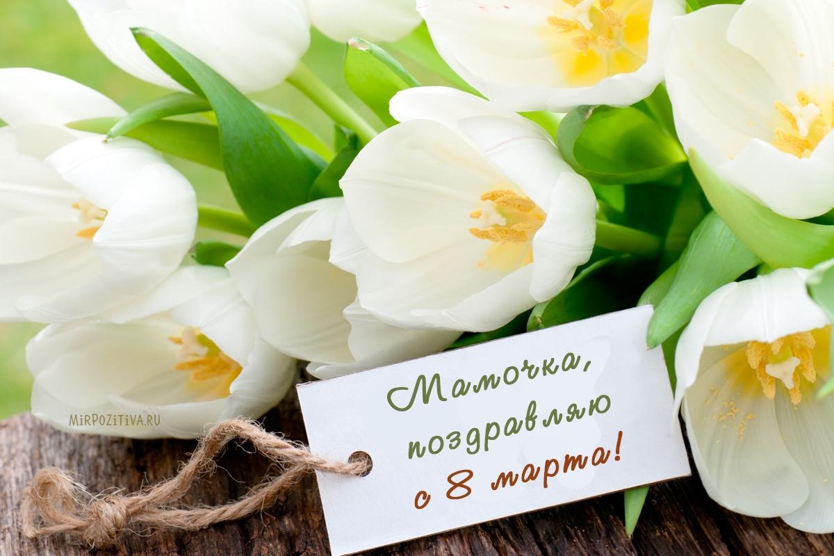 Поздравить маму с 8 марта в прозе красиво