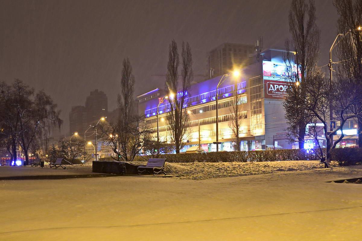 Погода добавила белых красок на Лыбедской площади
