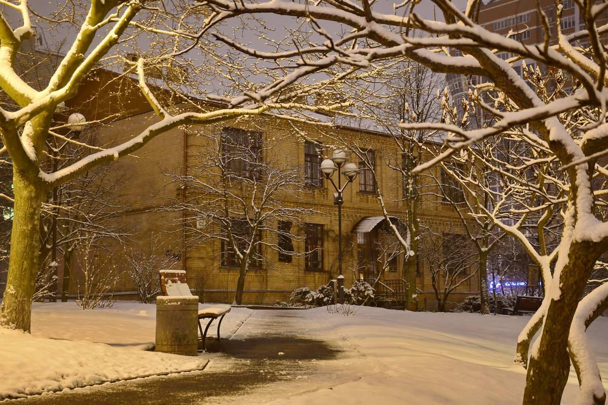 Музей Заньковецкой спрятался за голыми деревьями