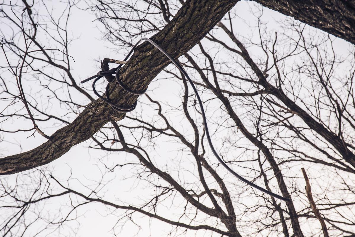 Мы только подходим, а на одном из деревьев уже повешен шнур