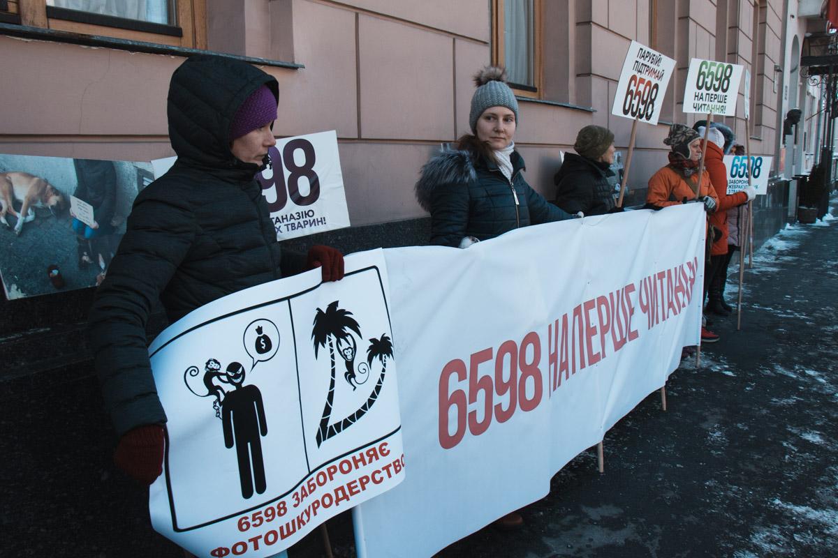 Митинг прошел под стенами комитетов Верховной Рады
