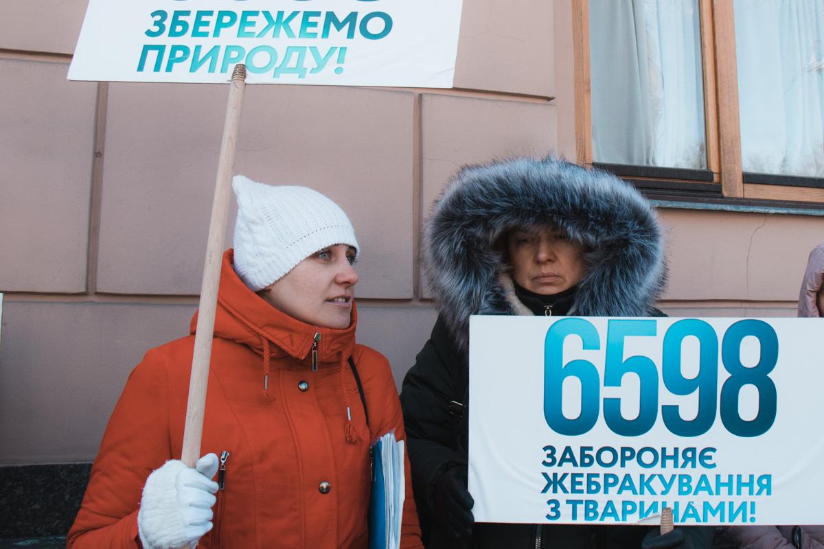 Активисты требовали, чтобы депутатами был принят законопроект № 6598