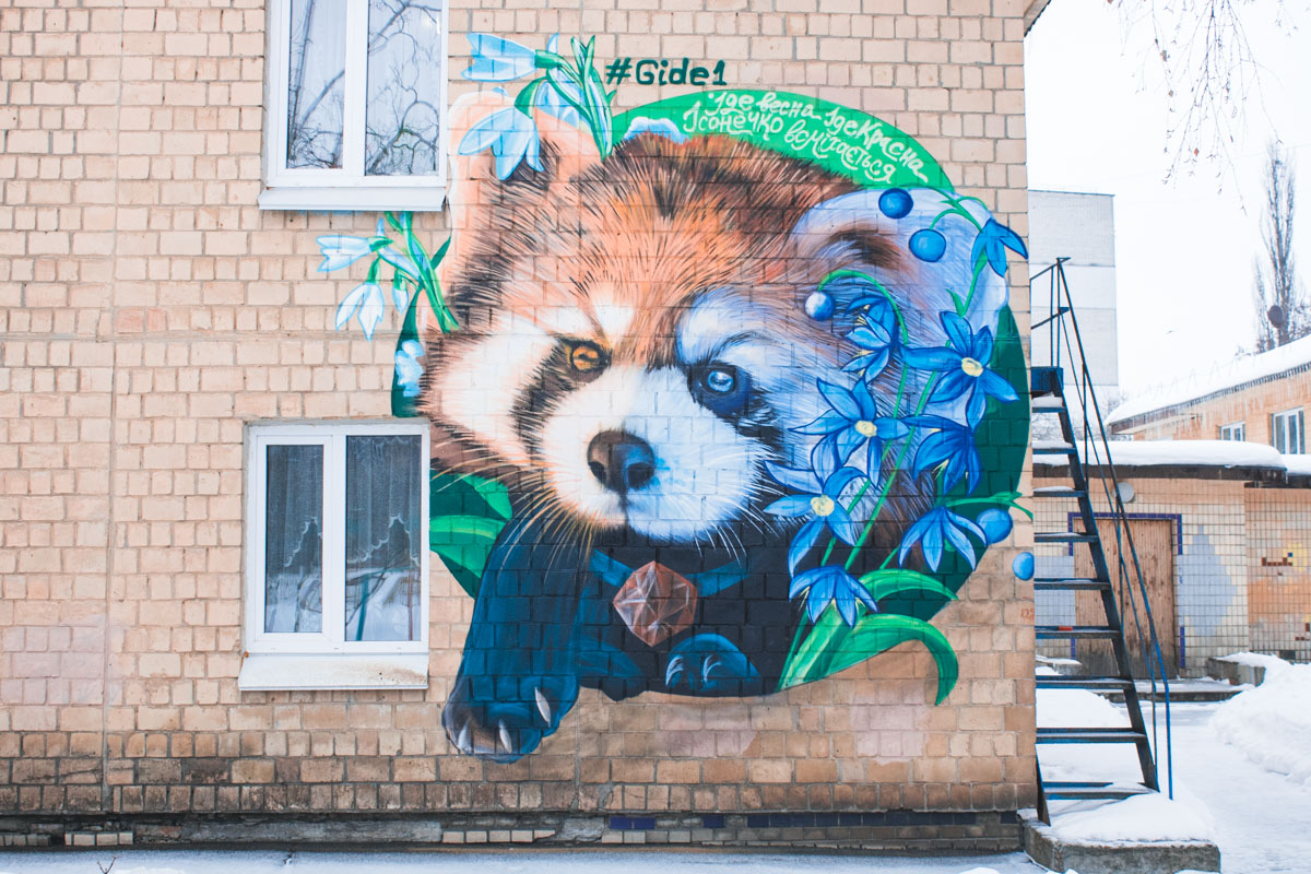 Милая панда на стене уже радует глаз жителей Днепровского района