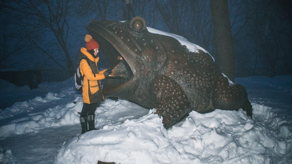 Жаба н самом деле огромная
