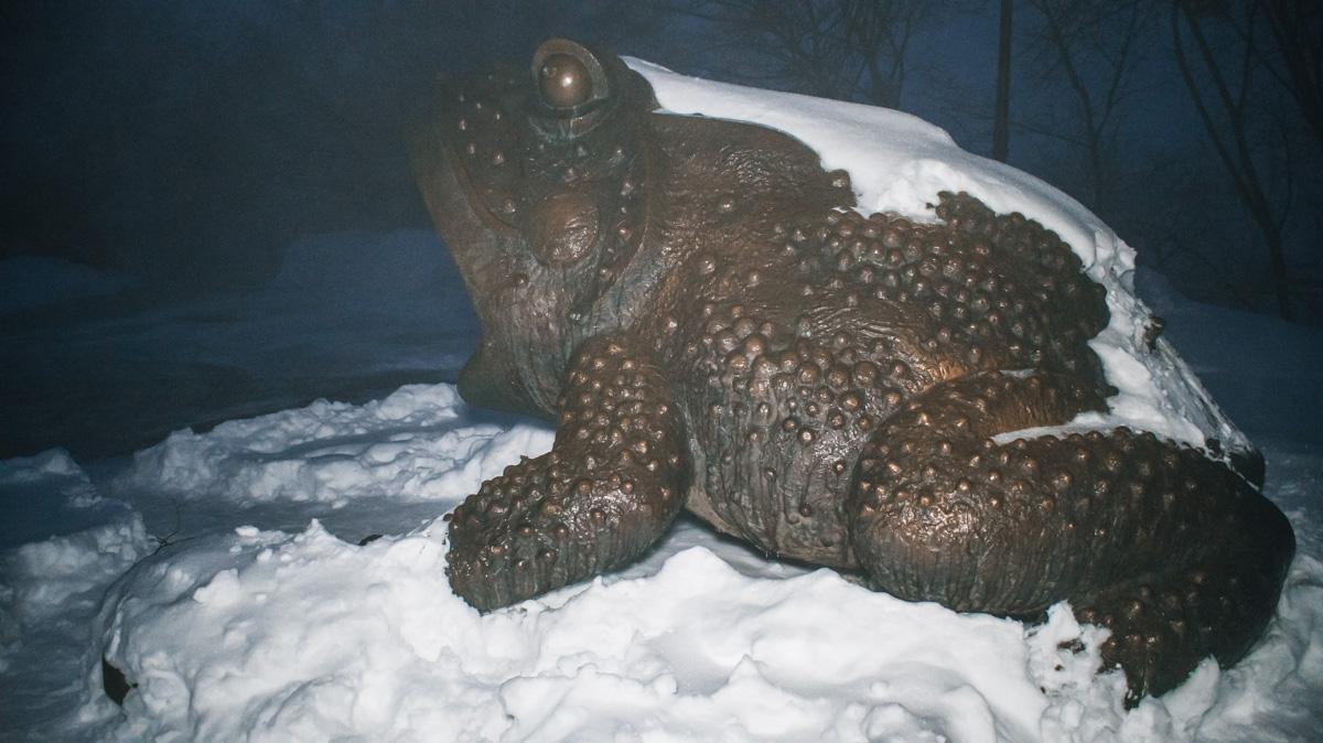 Гигантская бронзовая Жаба в Мариинском парке в Киеве